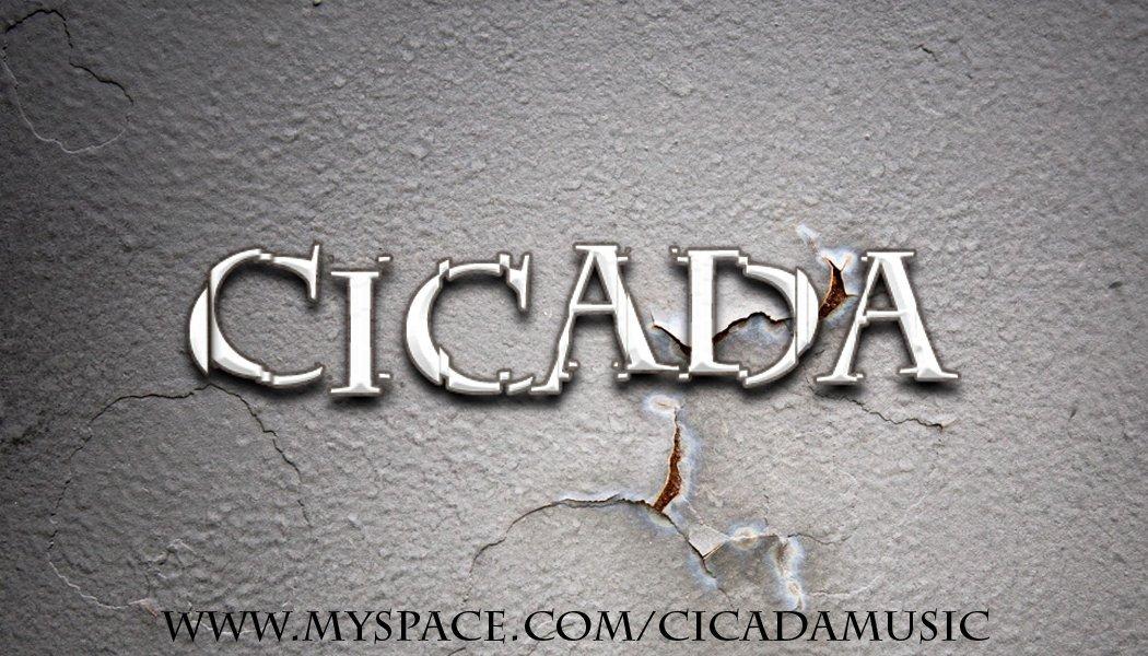 Cicada Business Card